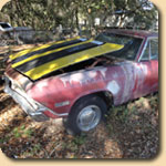 Buy Junk Cars for Cash Raleigh